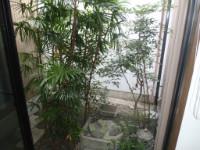 牧之原市 I様邸 井戸を活かした坪庭 施工写真2